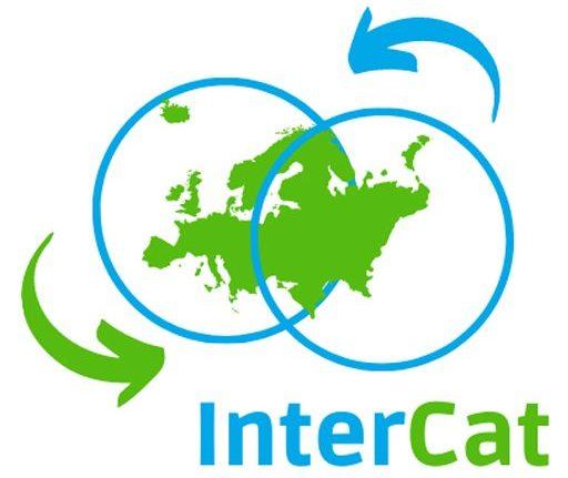 cropped-cropped-Logo-intercat-web.jpg